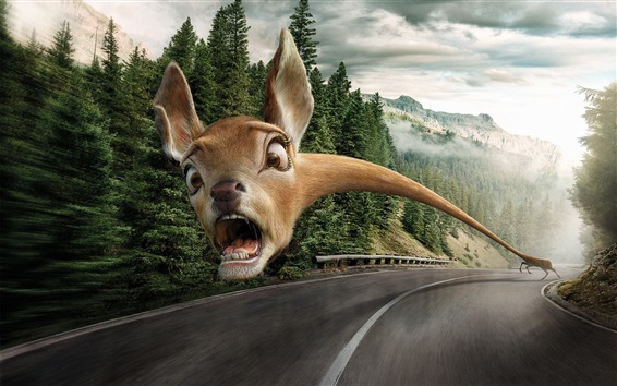 Wallpaper Funny animal, face, fear, long neck, road, creative picture