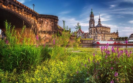 Wallpaper Germany, Dresden, city, grass, river, boats, bridge
