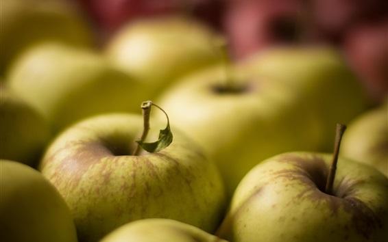 Wallpaper Green apples, fresh fruit