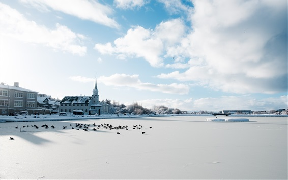 Wallpaper Iceland, Reykjavik, winter, snow, city, cold