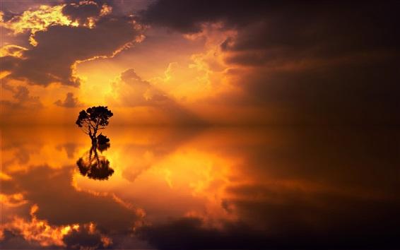 Fondos de pantalla Lago, árboles solitarios, reflejo de agua, puesta de sol