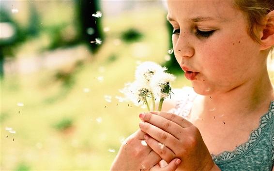 Обои Маленькая девочка играет одуванчики