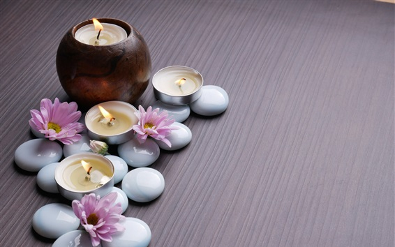 Wallpaper Pink chrysanthemum, candles, stones, SPA