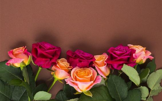 Papéis de Parede Rosas vermelhas e alaranjadas, fundo da parede