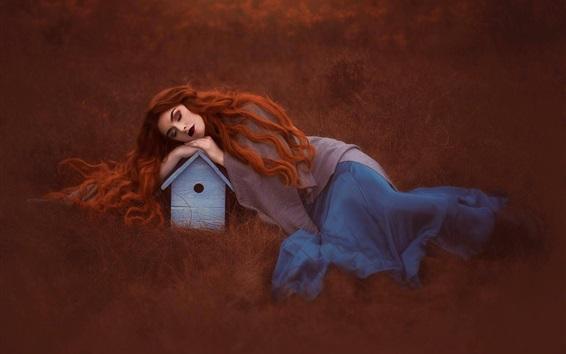 Wallpaper Red hair girl sleeping, bird house
