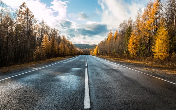 Wallpaper Road, trees, clouds, autumn