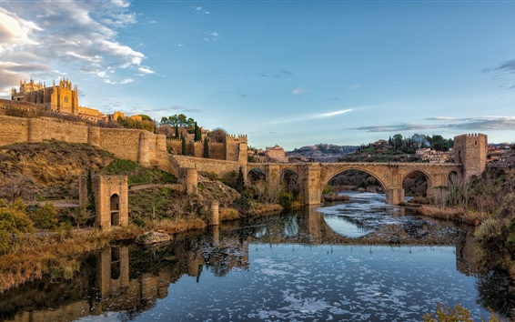 Wallpaper Spain, Toledo, bridge, river, city, grass