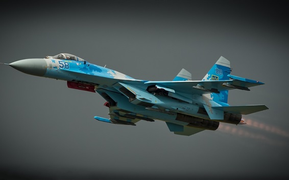 Wallpaper Sukhoi Su-27 combat aircraft