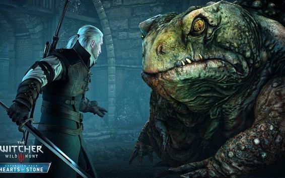 Fondos de pantalla The Witcher 3: Wild Hunt, prince-sapo