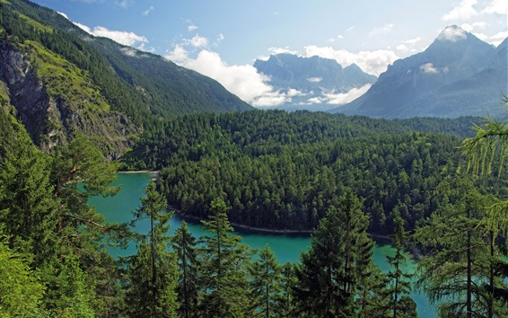 Wallpaper Tirol, Austria, mountains, trees, forest, river