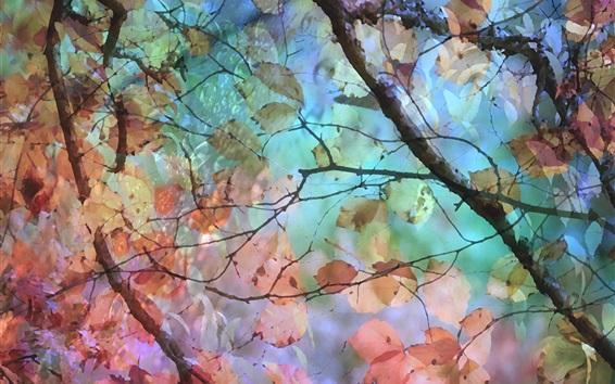 Papéis de Parede Pintura em aquarela, árvore, folhas, outono