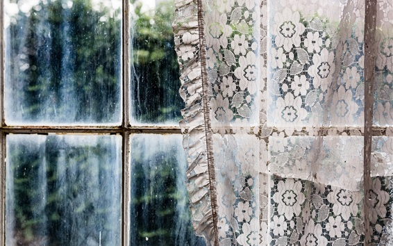 Wallpaper Window, curtains