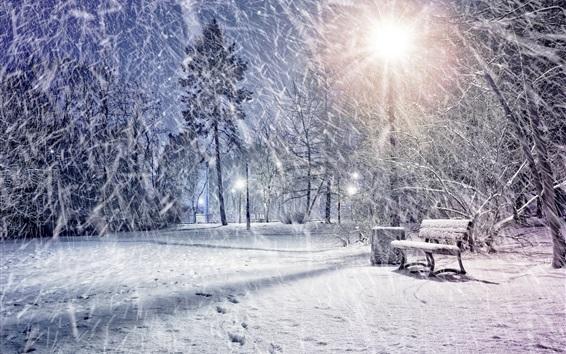 Wallpaper Winter, snow, park, trees, lights, night