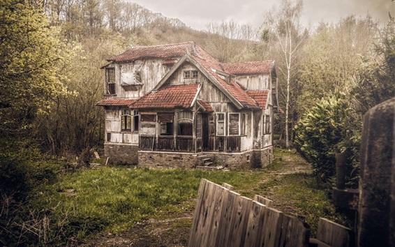 Fond d'écran Maison en bois, villa, forêt
