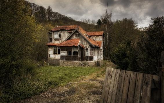 Fond d'écran Maison en bois cassé, arbres