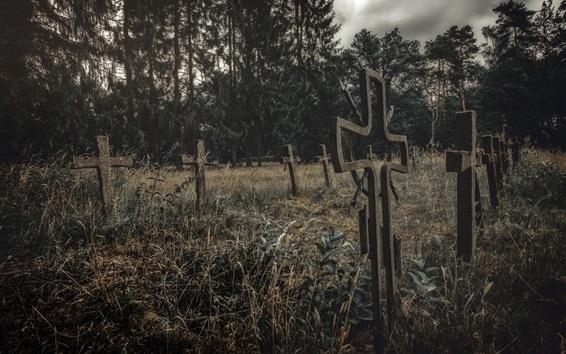 Wallpaper Cemetery, crosses, grass