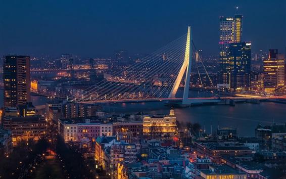 Wallpaper Erasmus Bridge, Rotterdam, Netherlands, river, cityscape, night, lights