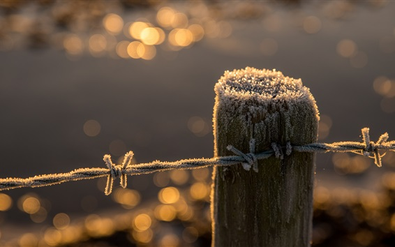 Hintergrundbilder Zaun, Stumpf, Frost, Draht