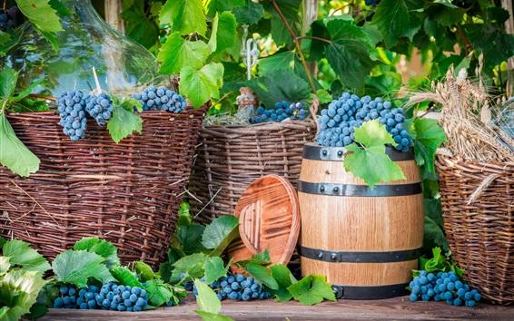 Papéis de Parede Colheita, uvas, frutas, barril, cesta