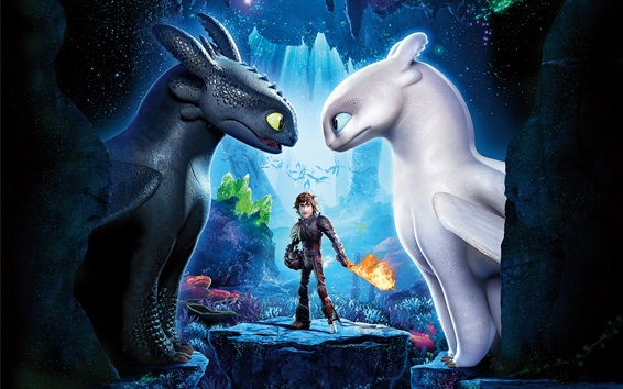 Wallpaper How to Train Your Dragon 3, black and white dragons