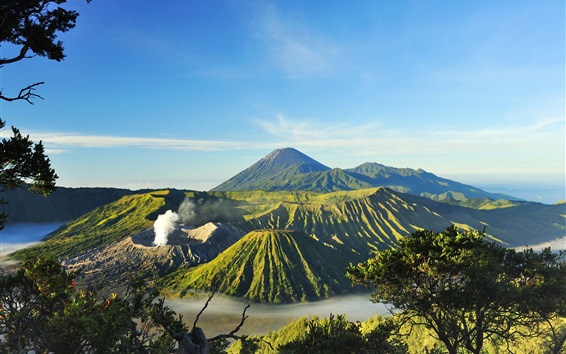 Wallpaper Indonesia, Mount Bromo, volcanoes, valley, trees, fog