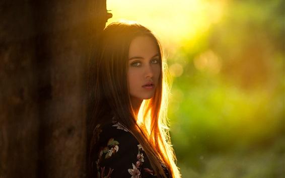 Fond d'écran Cheveux longs fille, regarde-toi, arbre, rétro-éclairage