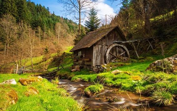 Wallpaper Mill, grass, trees, creek