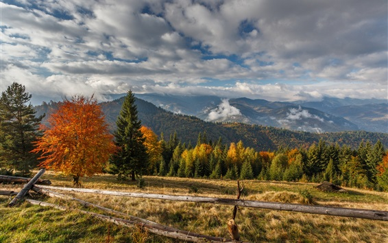 Wallpaper Mountains, trees, fence, clouds, autumn