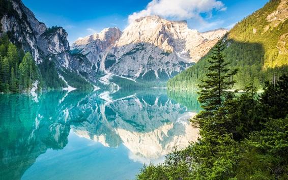 Wallpaper Mountains, trees, lake, water reflection
