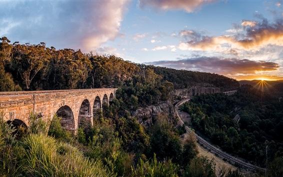 Обои Новый Южный Уэльс, Австралия, железная дорога, деревья, восход солнца