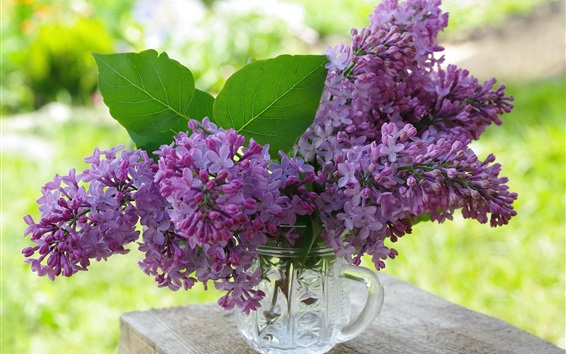 Обои Фиолетовые цветы, сирень, чашка