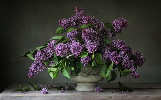 Papéis de Parede Flores roxas, lilás, vaso