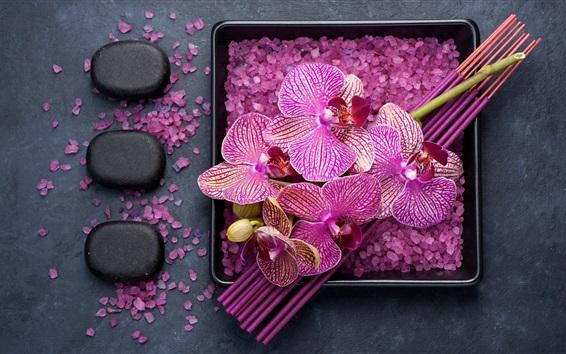 壁紙 紫色の胡蝶蘭、花びら、海塩、スパテーマ