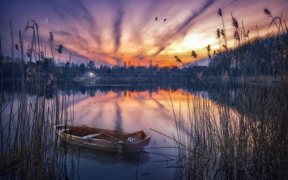壁紙 葦、ボート、湖、小屋、夜