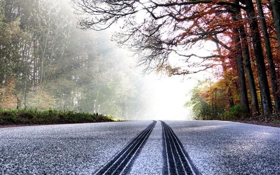 Fond d'écran Route, arbres, neige, soleil, hiver