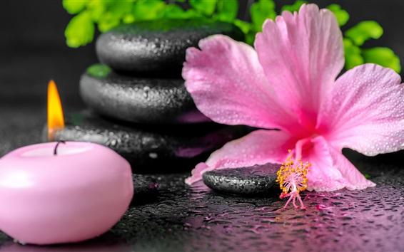배경 화면 스파, 핑크 꽃과 촛불, 물방울