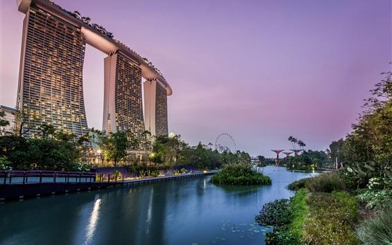 Обои Сингапур, сад, пруд, огни, небоскребы, вечер
