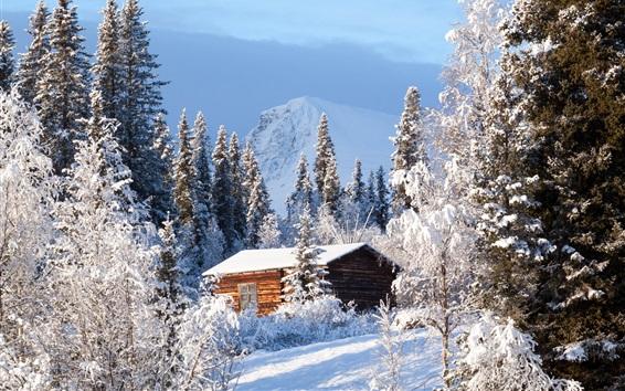 Wallpaper Sweden, forest, wood house, snow, winter