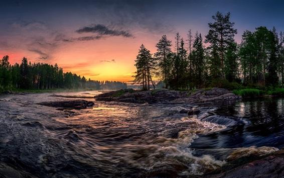 Wallpaper Trees, river, sunset