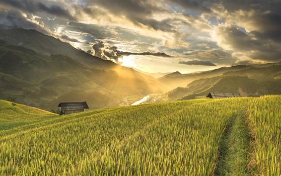壁紙 ベトナム、田んぼ、山、斜面、家、朝、雲、日の出