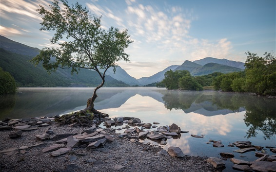 Wallpaper Wales, UK, trees, mountains, lake, water reflection