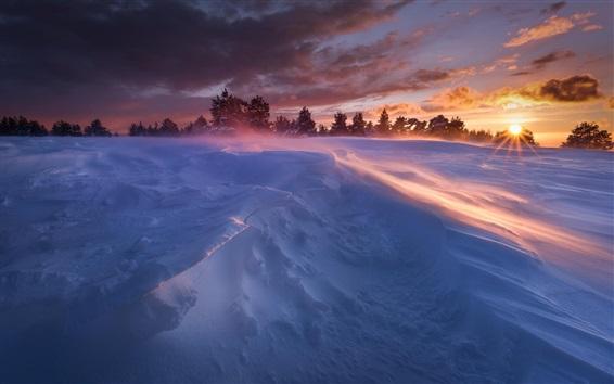 壁紙 冬、雪、木、日差し、日没