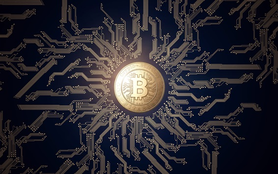Wallpaper Bitcoin, money, PCB, creative design