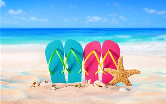 Wallpaper Blue and pink slippers, starfish, seashell, sea, beach