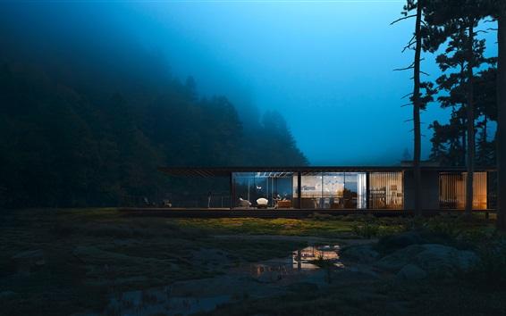 배경 화면 숲, 집, 조명, 밤