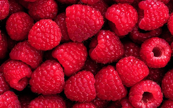 Wallpaper Fresh raspberry, red berries