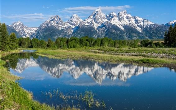 Wallpaper Grand Teton National Park, Rocky mountains, trees, river, water reflection