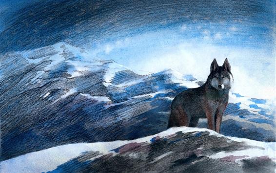 Hintergrundbilder Grauer Wolf, Berge, Schnee, Winter, Kunstbild