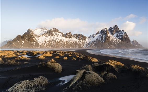 Wallpaper Iceland, Vestrahorn, coast, sea, grass, mountains