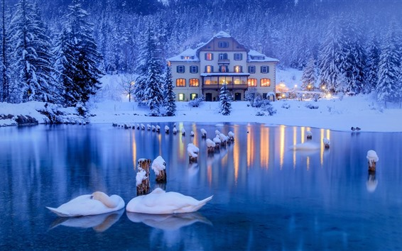 Wallpaper Italy, Alps, swans, pond, forest, snow, house, lights